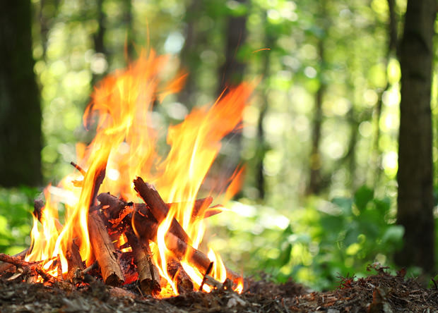 bigstock-Bonfire-in-the-forest--43880539